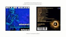 Wily Bo Walker: Almost Transparent Blues