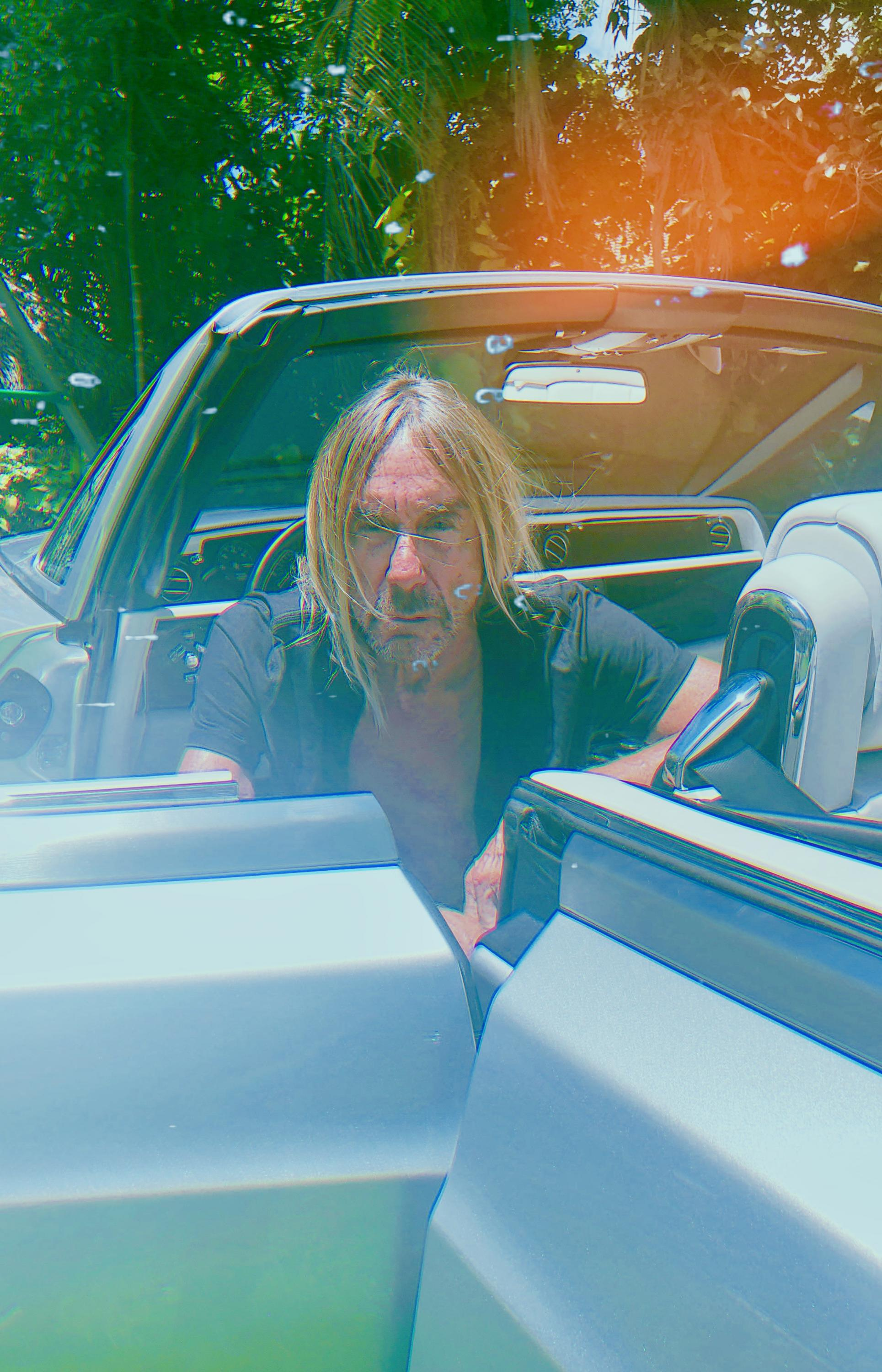 Iggy Pop Free Harmony Photo Credit Korine General