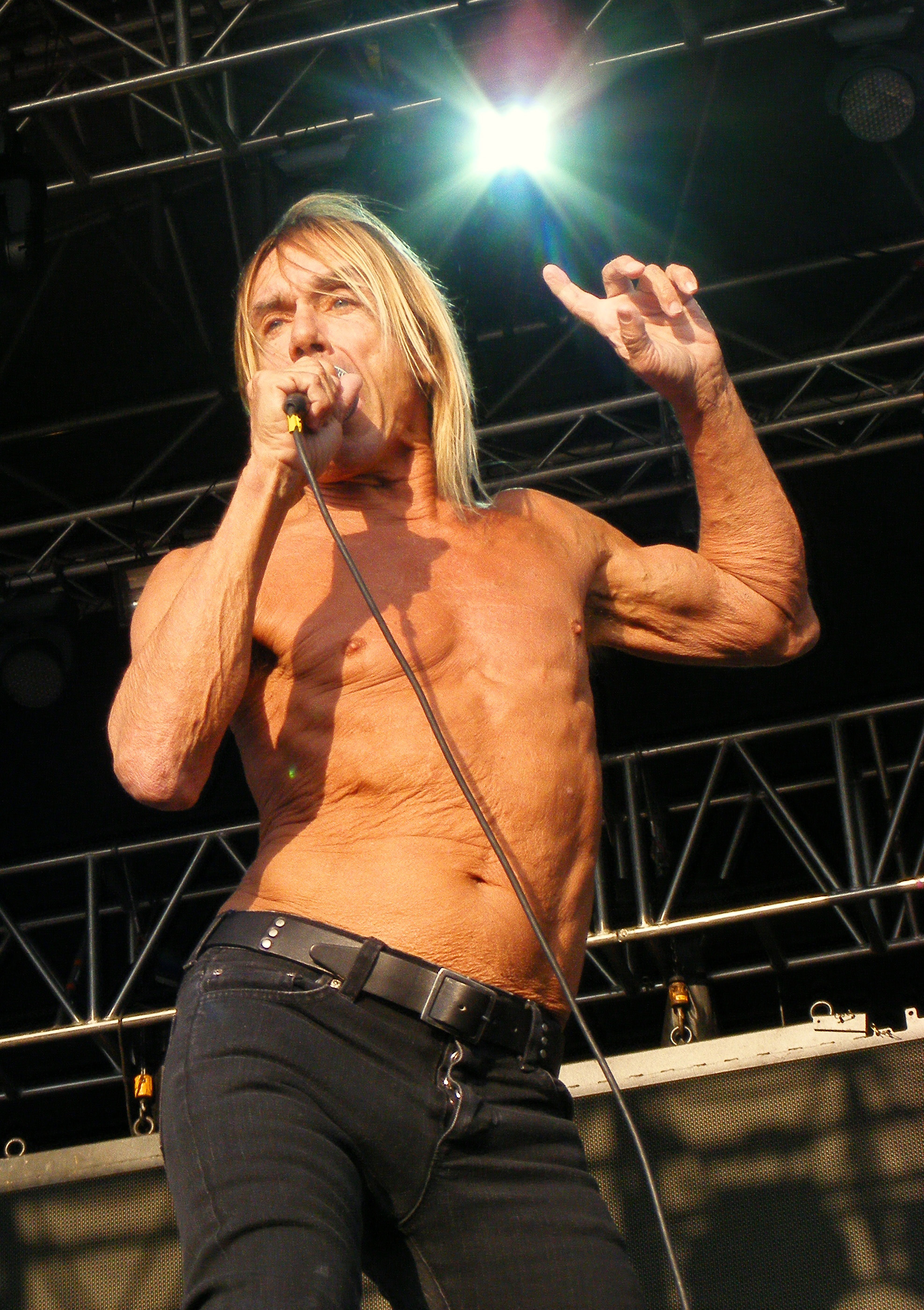 Iggy Pop Photo Credit Chester Rocks