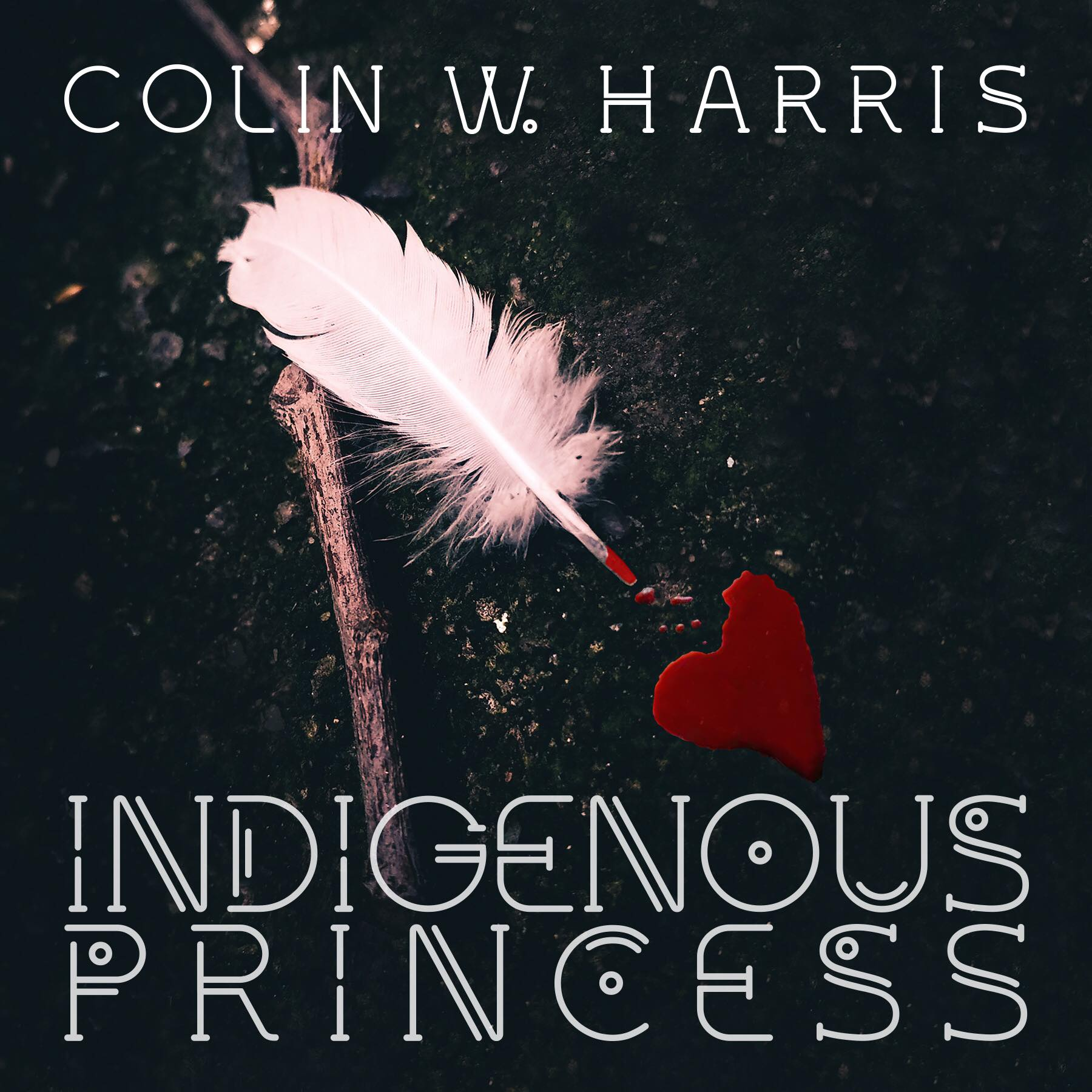 Indigenous Princess Colin W. Harris Graphic Art Sarah Hansen